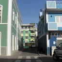 緑の岬から from Cabo Verde