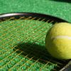 伊豆マリオットホテル修善寺 ベストレート保証にこだわっていなければ… テニスのできるマリオットホテルを探した結果