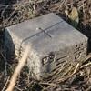 [三角点]★中島浜(四等三角点、点名:中島町)標石