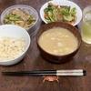 松屋の新メニュー「牛肉と筍のオイスター炒め定食」を食べてみた話