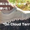 ガチで買ってよかったスニーカー「On  Cloud Terry」