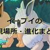 【ポケモンUSUM】イーブイの出現場所・進化条件一覧【ニンフィア・リーフィア・グレイシアなど】