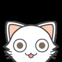 猫禅堂の日々