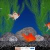 癒やし系アプリ(金魚・熱帯魚)