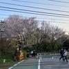 代々木上原不動産 賃貸 毎日速報!!4/25(日)