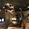 上野 国立科学博物館に参る