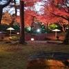 由志園のライトアップとイルミネーション③:島根県松江市