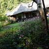 秋の北鎌倉:東慶寺と浄智寺