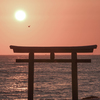 Oaraiisosaki shrine!! This place is a photo spot with torii at the sea:-)
