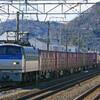 2月7日撮影 東海道線 大磯~二宮間 平塚~大磯間 久しぶりに貨物列車3本撮影
