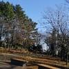 夢見ヶ崎動物公園でのびのび楽しく遊ぼう!発達障害を持つお子さんが楽しむポイント