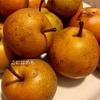 ハンガリー語でNasi:ナシは梨!?