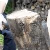 薪づくりのある生活と、現代で感じづらい生きる喜びと、エネルギーを地産地消するという話