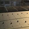 実際に住んでみて 太陽光発電ってホントに得なの?編