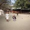 【イベント】次男の七五三(1995年10月)