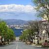八幡坂から函館港を望む