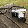 M3とSummilux 50mm f1.4で桜とおまけ