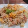 二子玉川!麺類がうまいと評判の町中華!食べるのは五目チャーハン! つばめ(二子玉川/五目チャーハン)