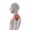 肩の筋肉痛が起きないときの対策法