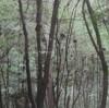 東京都庭園美術館のボルタンスキー展を見る