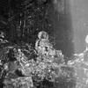 本当はコワい裏山霊場巡りと、初秋の心霊写真日記。