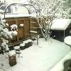 2月の雪と、今日のオヤツと夕ごはん