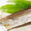 ドジョウ、ウツボ。。。夏におススメの魚介類!美味しい食べ方を調べてみた♪