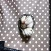 猫じゃらしとしっぽ