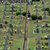 秋夕前に済ませる墓地の草刈り