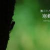 二十四節気七十二候 「立秋 寒蝉鳴」(2017/8/14)