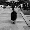 鎌倉鶴岡八幡の七五三光景