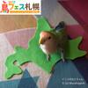 「鳥フェス札幌」 6月3日㈯・4日㈰