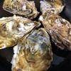牡蠣のフローレンス風グラタン