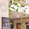【お気に入りカフェを見つける旅に出よう】CSFE PASS(カフェパス)の月額定額制プランでカフェ巡り