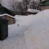 除雪しかしてね~w