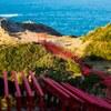 元乃隅稲成神社に夕日を撮りに行く