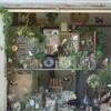 ポケマル&GRIS  BOX のオシラセ