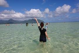 〔2018年10月ハワイ〕サンドバー(天国/天使の海)ツアーを紹介!どんな写真が撮れる?カメには会える?ツアー内容は?検討している方は必見!
