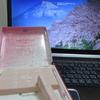 桜~チョコレート