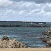 山形県鶴岡市へ!クラゲで有名な「加茂水族館(クラゲドリーム館)」に行ってきました!