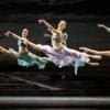 日本初演、ルグリ版『海賊』みどころ ウィーン国立バレエ団来日公演