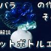 【その2】ペットボトルで青い薔薇を作る How to make blue rose no.2