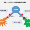 記事:ご参考、【UPDATE】「免疫チェックポイント阻害薬、抗PD-1/PD-L1/CTLA-4抗体 国内開発状況まとめANSWERS NEWS 11月22日