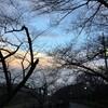 1/2~1/8 今週のまとめ (2017-W1)