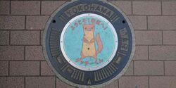 神奈川県横浜市(栄区)のマンホール