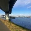 中川:平井大橋から新中川分岐間