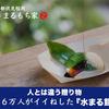 SNSで話題の和菓子!【水まる餅】の京都まるもち家を紹介するにゃ