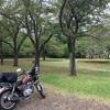 茎崎こもれび六斗の森 (つくば市) キャンプ場レビュー