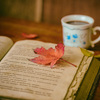 青山ブックセンター2018年総合ランキングは要チェック!年末年始の読書リストにもおすすめ