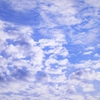 自分流「旅のスタイル探し」。大空に舞う鳥のように時には時を忘れて空を見つめて大きく背伸びをしたくなるのはなぜ。